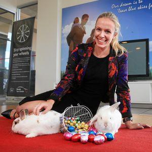 Rabbit Rescue Adoption Day - Sharp Motor Group - Little Palm Creative Co.