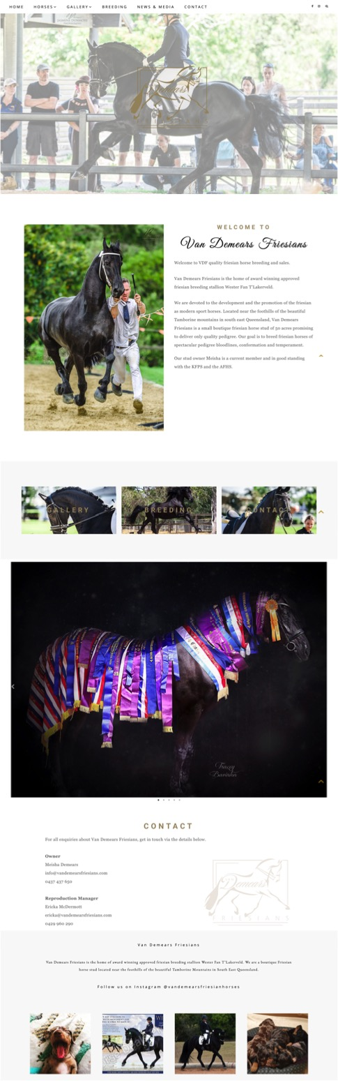 Van Demears Friesians Website Design - Little Palm Creative Co. Gold Coast Web Design